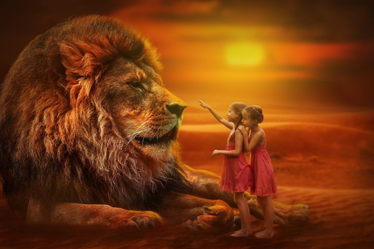 lion-3099986_1920.jpg